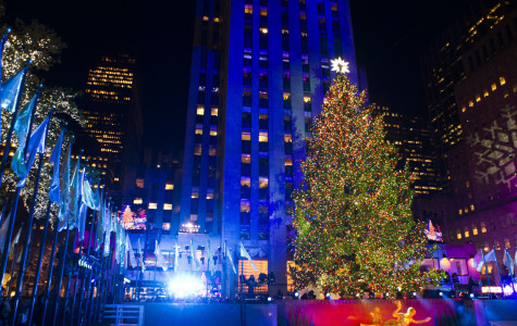 A New Tree Planted: The Selection of the Rockefeller Christmas Tree